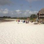 spiaggia davanti al Barracuda