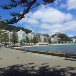 Photos of the Bay