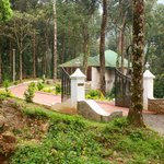 Deep Woods Resort at Munnar