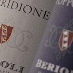 Le etichette dei Vini Rossi della Cantina Berioli