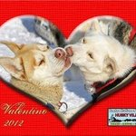 Festeggia con noi San Valentino