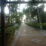 walkway to beach !