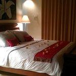 Nice n Cosy Bed!