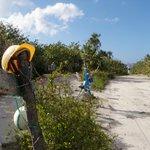 "Funky sea trash ""sculpture"" fence on the walk to Jackson beach."