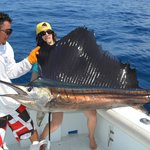 Wife's sailfish (biggest of the day)