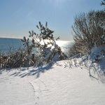 Winter view from suites overlooking ocean and Cliff Walk