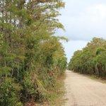 Die Loop Road im trockenem Zustand