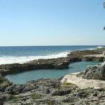 saltwater pool, get your snorkel