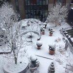 Garden view - snow