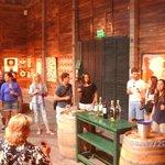 Antigua cava. Hoy: degustación vinos. U$S 3 (tres tipos de vinos)