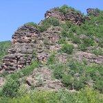 """Canyon """"Little Colorado"""" van de Temstica"""