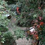 вид на внутренний садик с нашего балкона