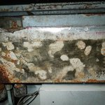 Air Conditioner Mildew/Mold
