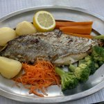 swordfish - espadon - espadarte