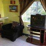 Big TV in living area