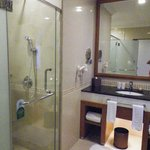 bathroom with shower and separate bathtube
