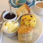 The fantastic cream tea