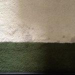 Mamounia  wine spill 2012