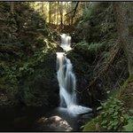 Falkau Waterfall in Summer