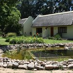 the natural swimming pond and cottages