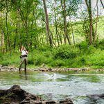 Fly Fishing on the Jackson River