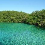 El cenote..... bellissimo!