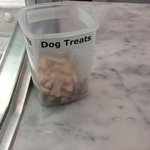 dog treats at the counter.