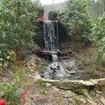 Mini waterfall down a path from Chris's ca