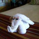 towel created animal for your bed each day