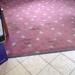 stained lobby carpet