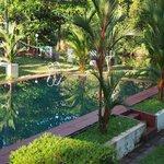 Fresh water pool in the garden