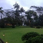 Spacious landscape in the resort