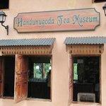 Tea museum