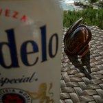 部屋のバルコニーでmodelo(ビール)を飲みながらのんびり。