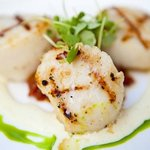 I love scallops anytime of year