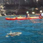 Santorini Sea Kayak - Day Tours