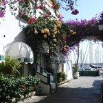 Puerto Mogan ---- well worth a boat trip