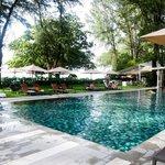 the gorgeous pool!
