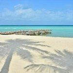 Playa del Norte