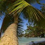 The best photo tour on Kauai!
