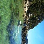 Beautiful Tonga Island marine reserve