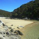 Mosquito Bay Abel Tasman National Park