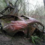 Find the abandoned vintage car.