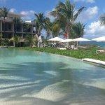 Viceroy Resort pool view