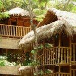 Kalindi river resort Tree house