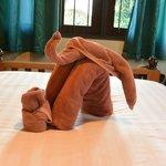 服务生为孩子用浴巾做的大象,超有爱