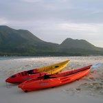 Kajak Tour White Island