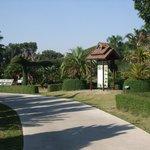 Botanical garden pathway
