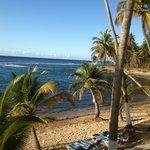 Caribe Playa Beach Hotel Foto