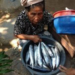 Local lady selling fish - which we purchased and ate for supper!